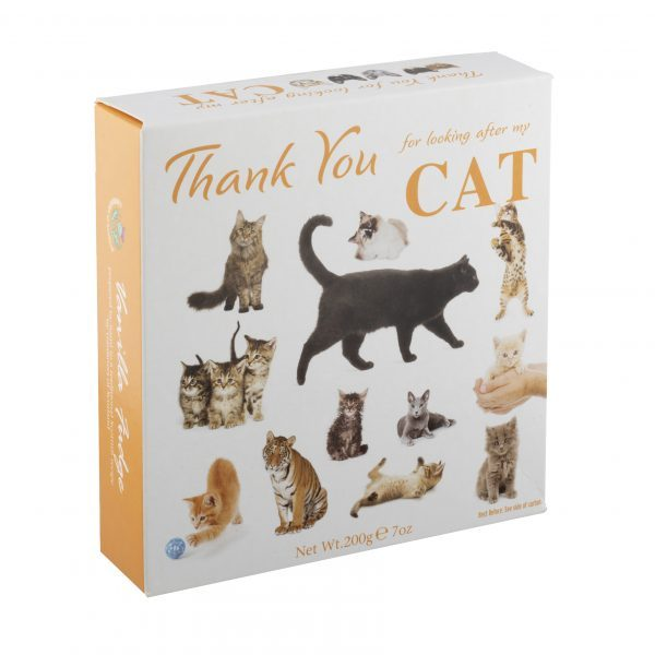Thank you for looking after my cat