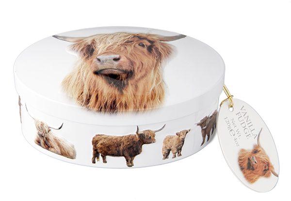 highland cow decorative fudge tin