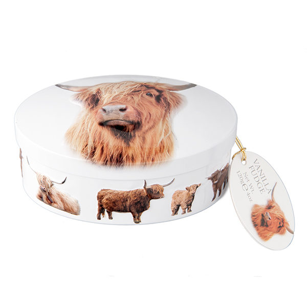 highland cow decorative fudge tin