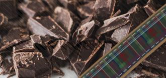 chocolate flavoured fudge